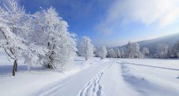 Zimné športy: Budúcnosť slovenského ženského biatlonu