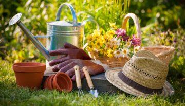 Inovujte exteriér rodinného domu a záhradku ešte pred koncom leta