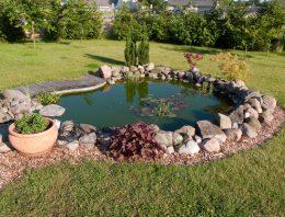 Ako sa starať o záhradné jazierko?